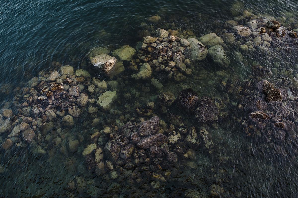 Vancouver seashore
