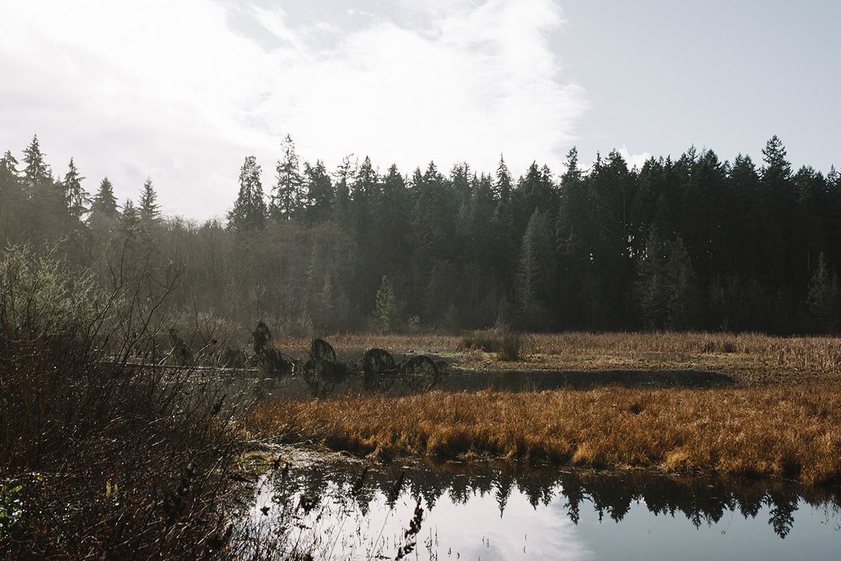 vancouver stanley park otter lake